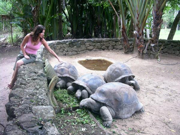 viaggio alle mauritius