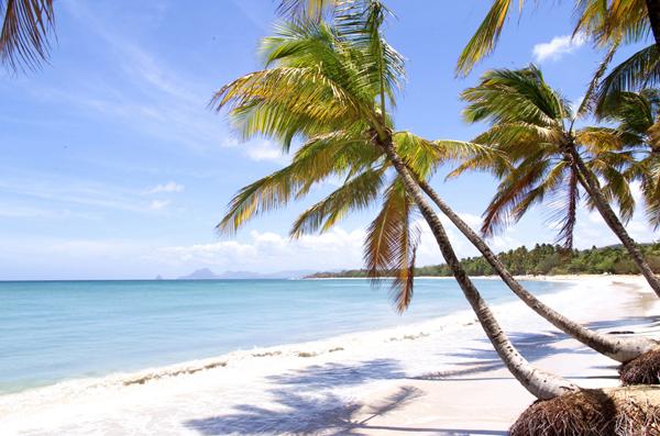 Viaggio a Martinica