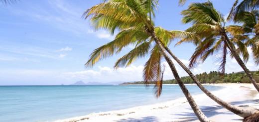 capodanno caraibi martinica
